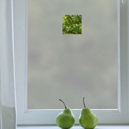 Privacy Window Film Cut Outs